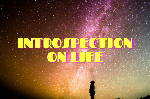 INTROSPECTION ON LIFE